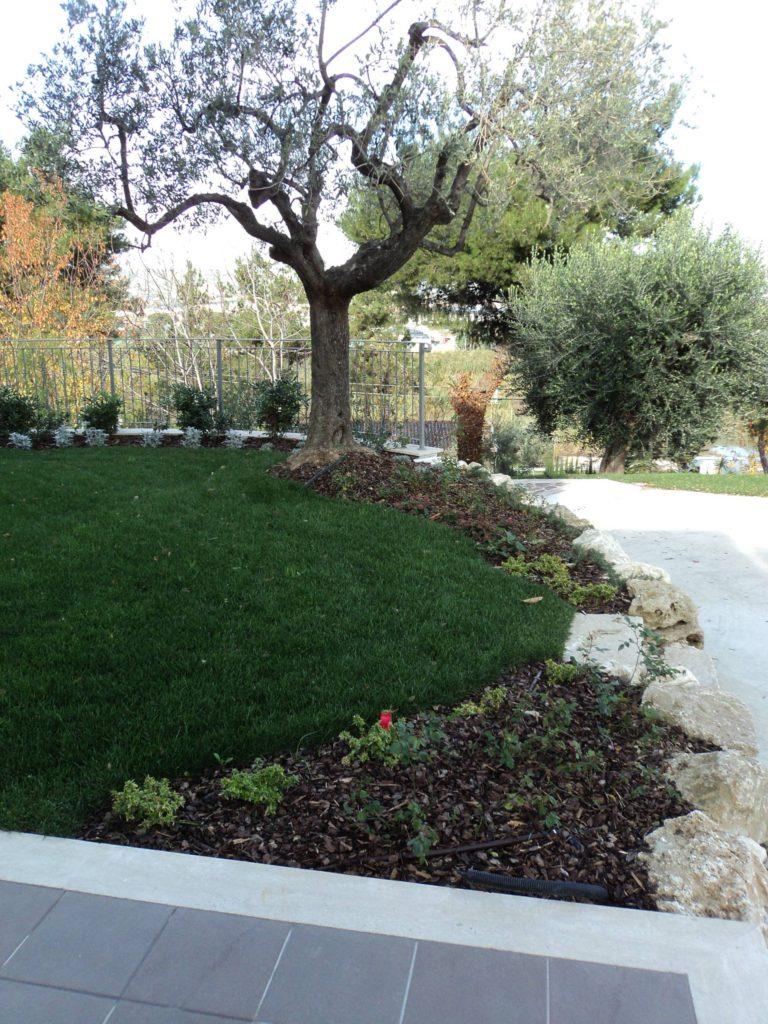 Manutenzione giardini 3 eco services for Manutenzione giardini
