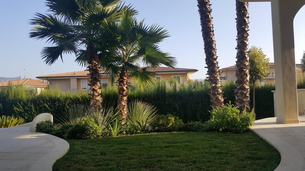 Piante Per Giardini Moderni home - eco services | creazione e cura del verde